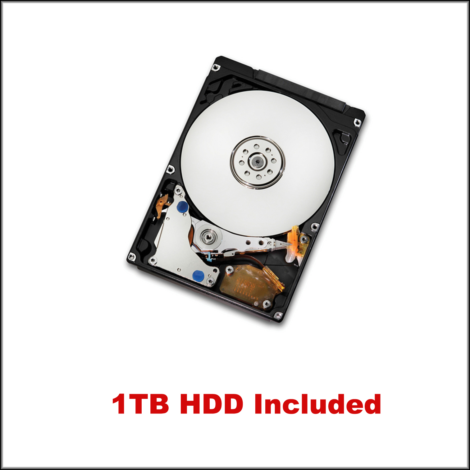 With 1TB HDD