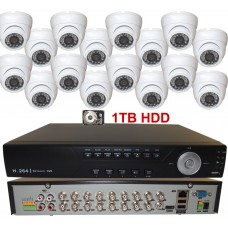 1. 16 Ch Channel Real-time H.264 CCTV DVR with 16 White Dome 800TVL Cameras and 1TB HDD